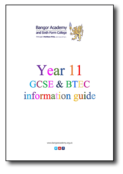 Year 11 GCSE and BTEC Information Guide
