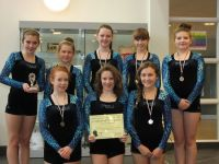 Trampolinists' Success