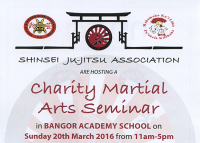 Charity Martial Arts Seminar