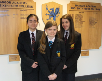 Success in the 2015 Bangor Speech Festival