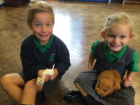 Science Dept 'Animal Road Show'